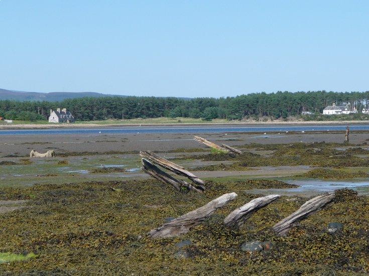 Remains of Embo fishing fleet at Loch Fleet