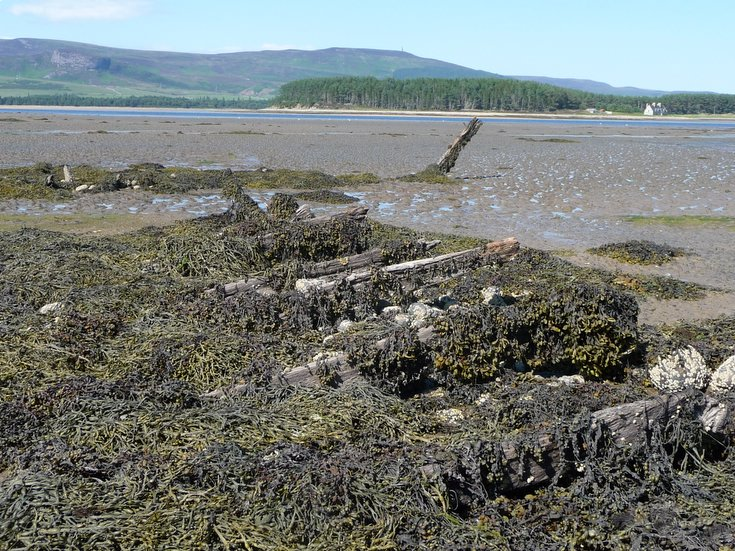 Remains of Embo fishing fleet at Loch Fleet