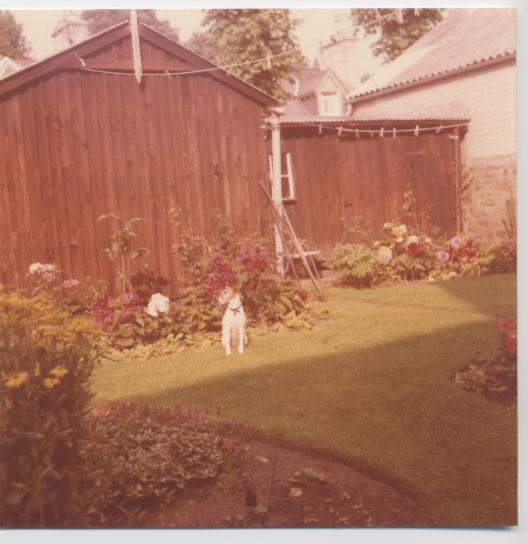 Garden at 12 Castle Street, Dornoch