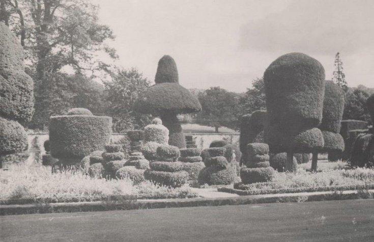 Kathleen Lyon photograph collection - garden Powis Castle