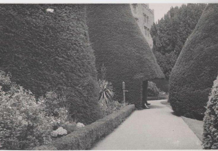 Kathleen Lyon photograph collection - Powis Castle garden