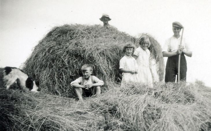 Haymaking at Proncy