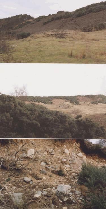 Evelix valley - set of colour photographs