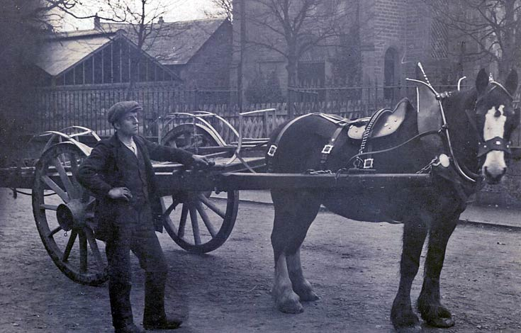Man with horse and trap