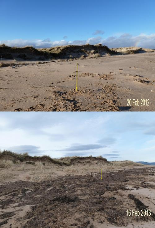 Overview of Dornoch links dune erosion Feb 2012 - 2013