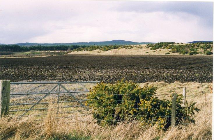 The Dornoch Esker north of the Camore Road