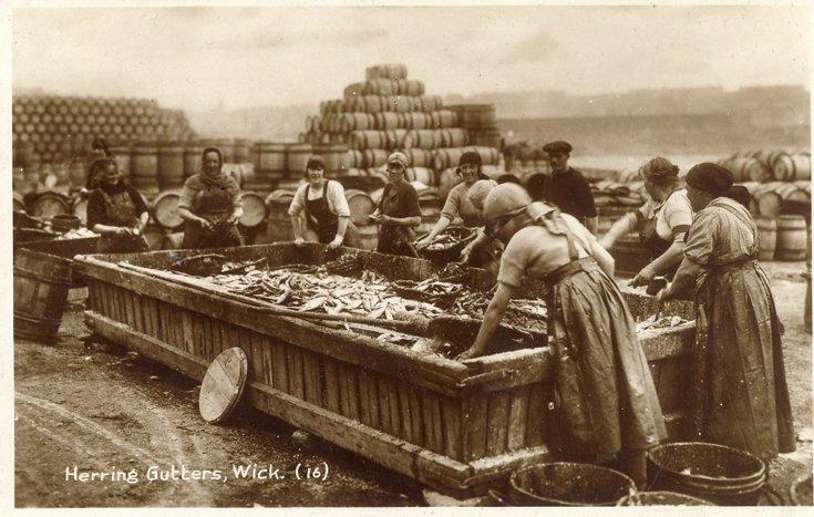 Fishing scenes Scotland 'Herring Gutters Wick''