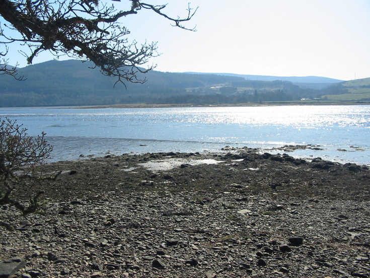 Possible Fish Trap at Creich - image 2