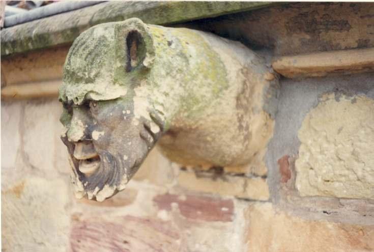 Gargoyle on the cathedral