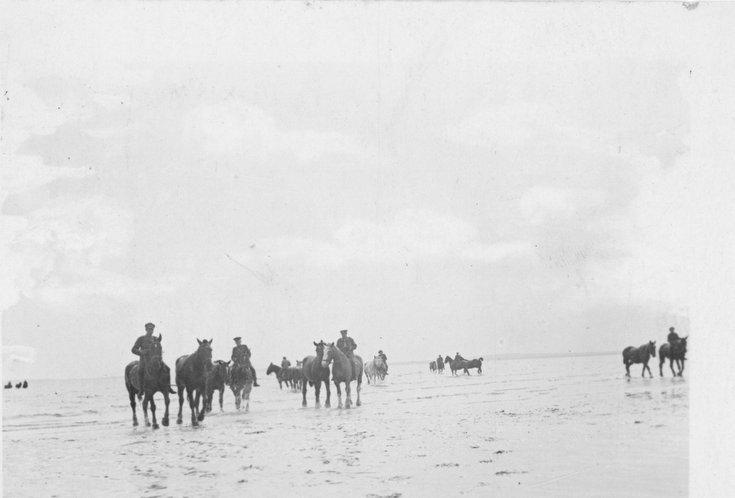 C.F.C. horses exercising on Dornoch Beach
