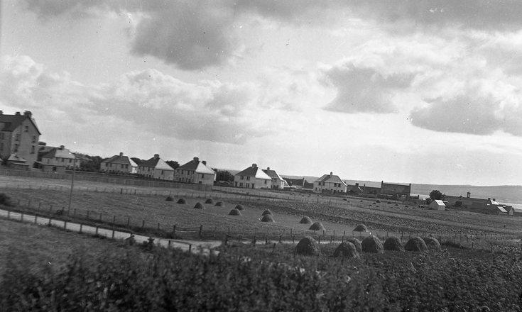 Bishopsfield housing development