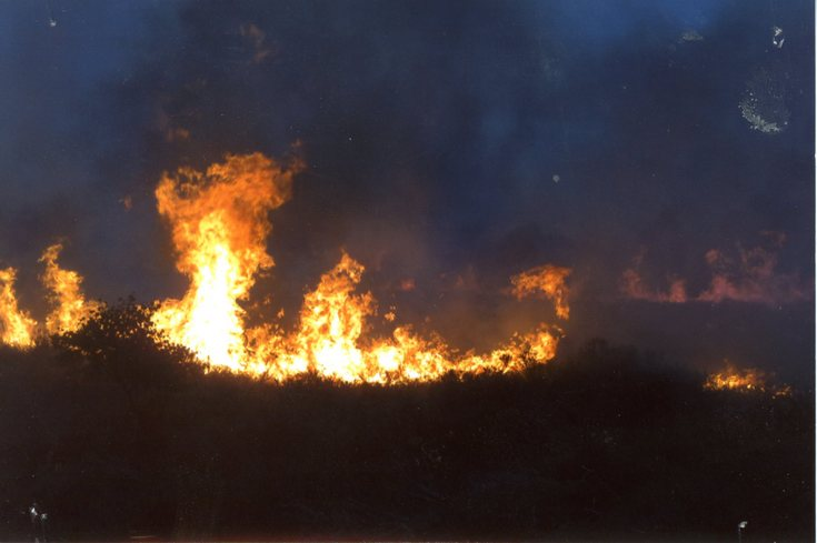 Wild fire at Tain in the Spring of 2010