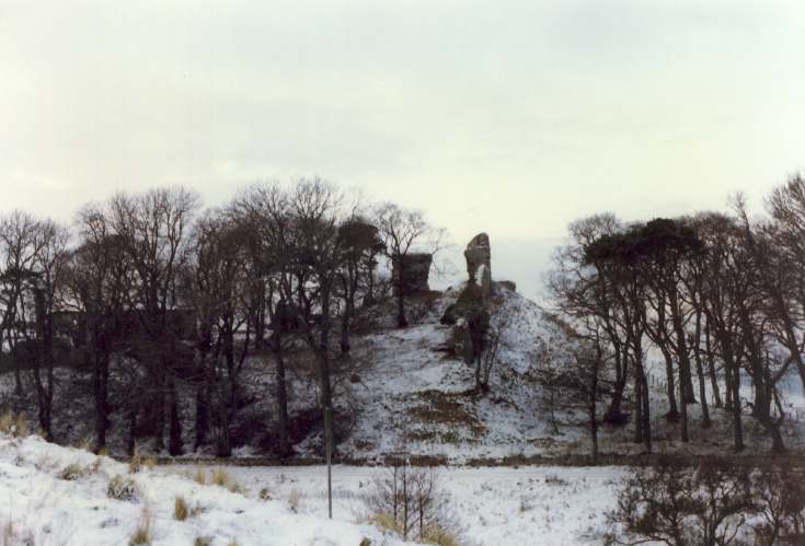 Skelbo castle