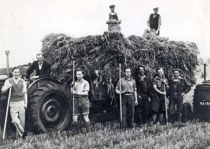 Harvesting at Cuthill farm 1950