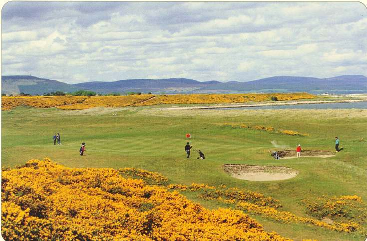 Golf course, Dornoch
