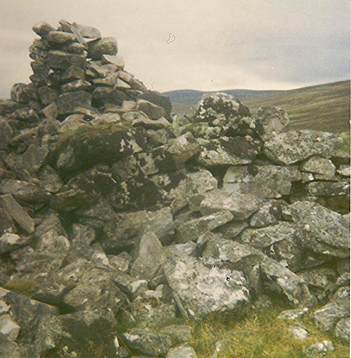 Broch at Brae, Strath Carnaig