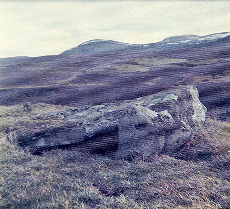 Chambered Tomb ~ Kist on Cairn, Sciberscross