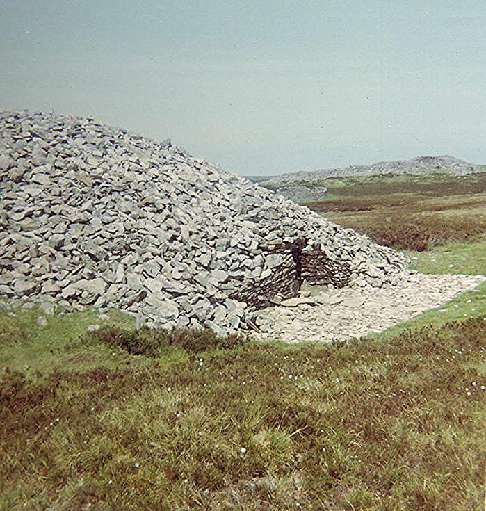 Chambered Tomb ~ Camster Round Cairn
