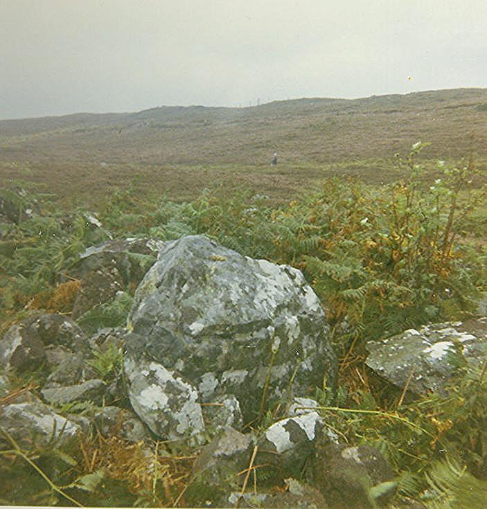 Chambered Tomb at Ledmore - Spinningdale ~ Earthfast Boulder in Cairn