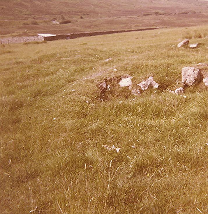Hut Circle at Rhaoine, west of Rogart