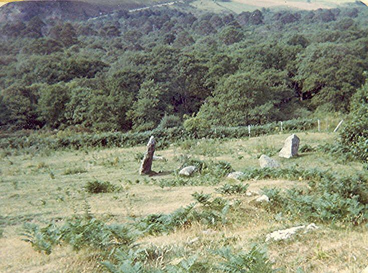 Stone Circle at Aberscross