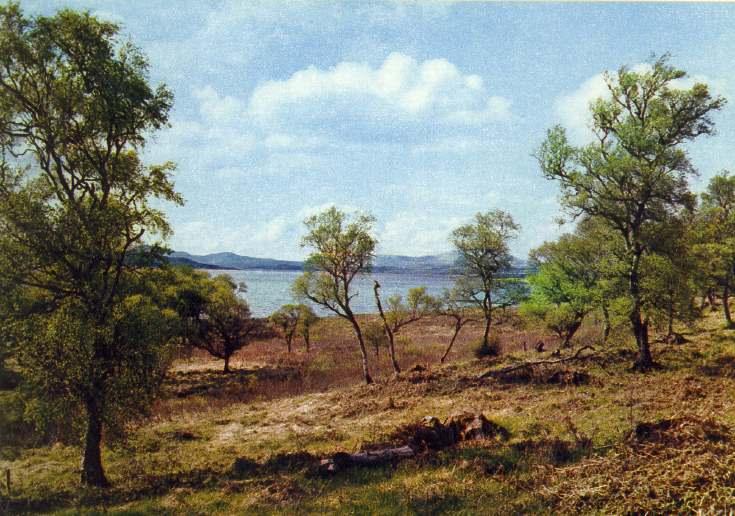 Loch Shin near Lairg, Sutherland