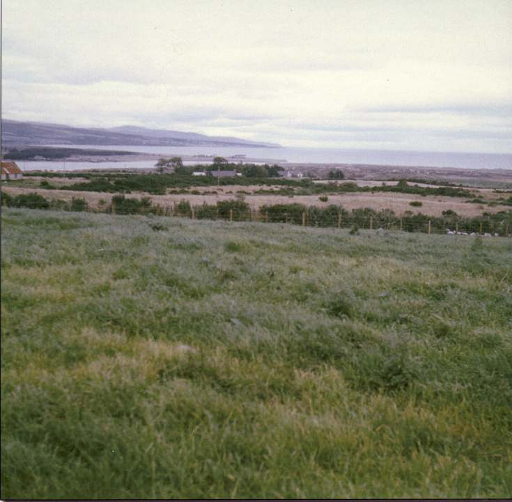 Photograph of of land after reclaimed and reseeded.