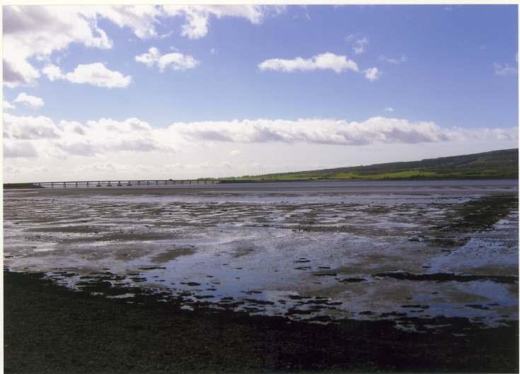 Meikle Ferry