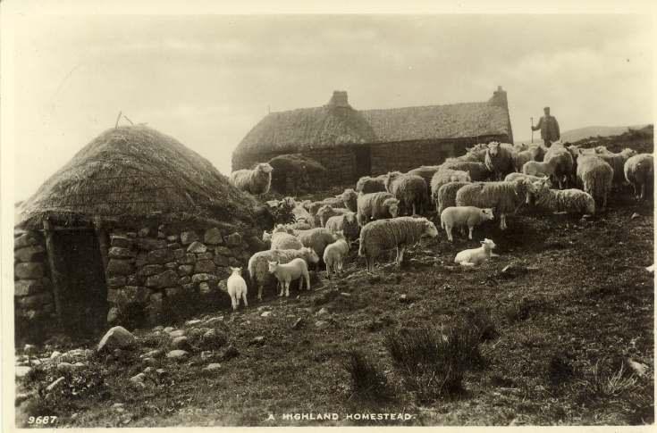 A Highland homestead