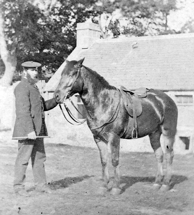 Man and horse at Pitgrudy