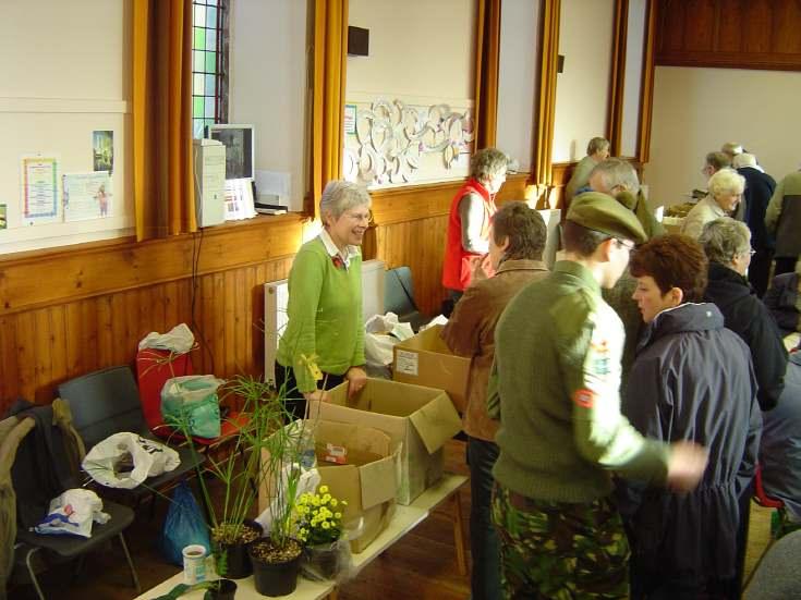 Plant Stall Dornoch Heritage Society Coffee Morning