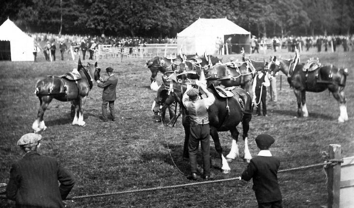 Photograph of Sutherland Agricultural show, Golspie, 1913