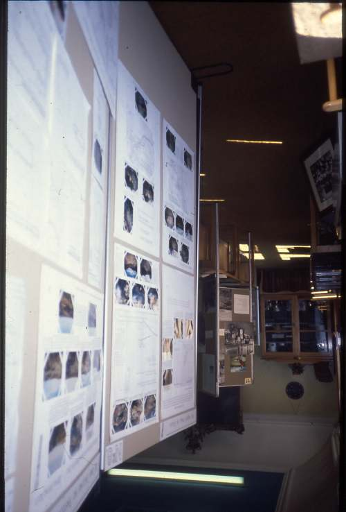 DHS summer exhibition 1989