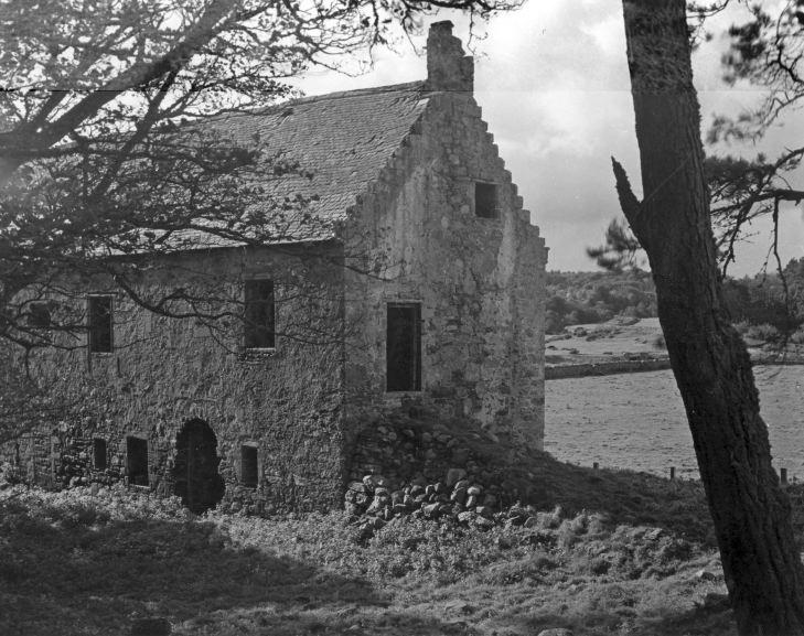 Skelbo House & Castle