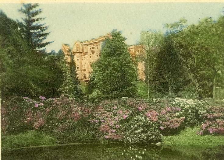 Rhododendrons at Skibo photograph by Louise Carnegie