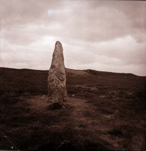 Standing stone Loch au Treel