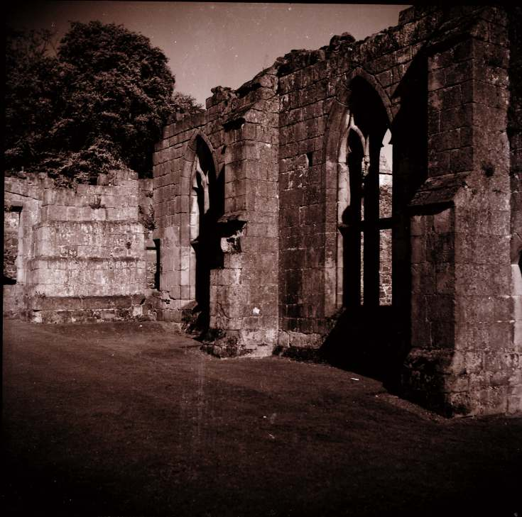 Monastic Ruins ~ Collection of negatives belonging to Miss Lyon
