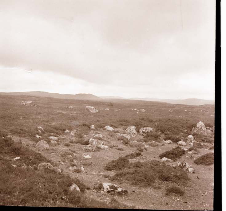 Collection of negatives belonging to Miss K. L. Lyon