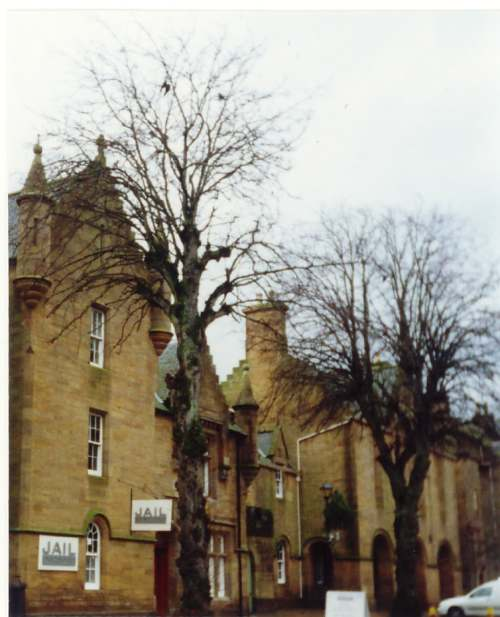 Trees outside the Jail, Dornoch