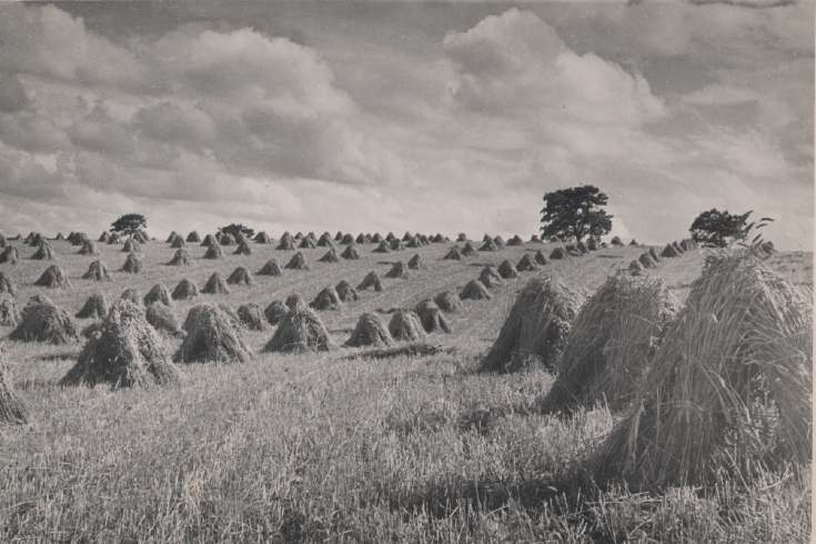 The Photography of Kathleen Lyon - hay stacked in a field