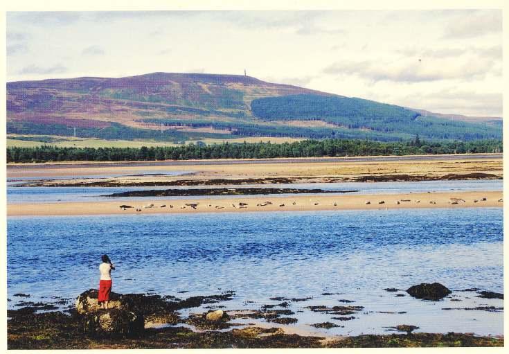 Furness Postcard Collection -  Loch Fleet