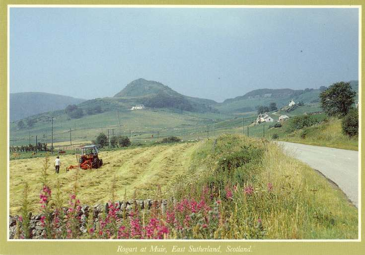 Furness Postcard Collection -  Rogart at Muie