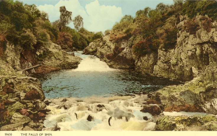 Furness Postcard Collection -  Falls of Shin
