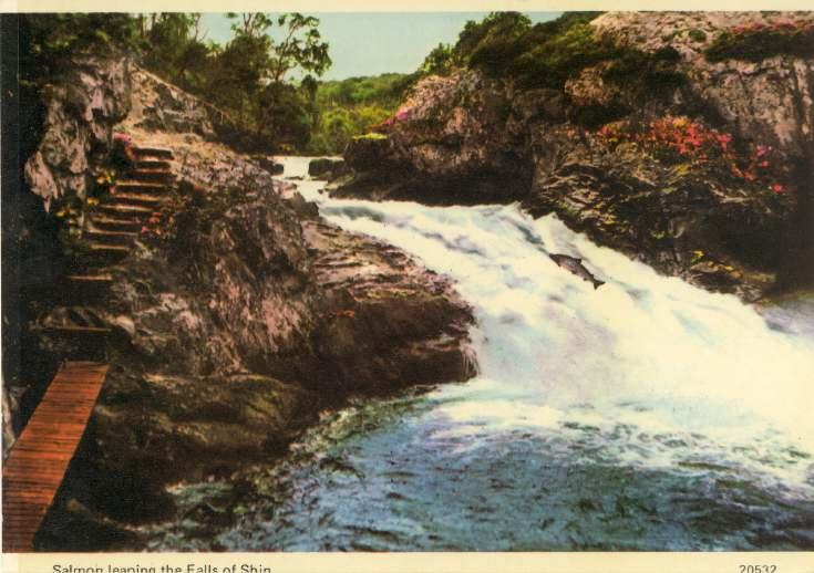 Furness Postcard Collection -  Falls of Shin