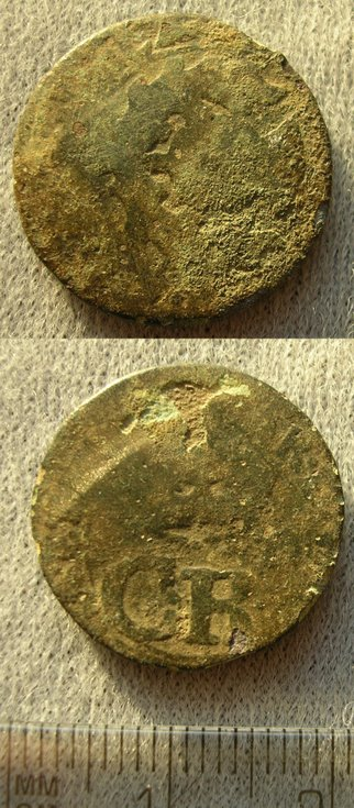 Coin found in Dornoch Woods
