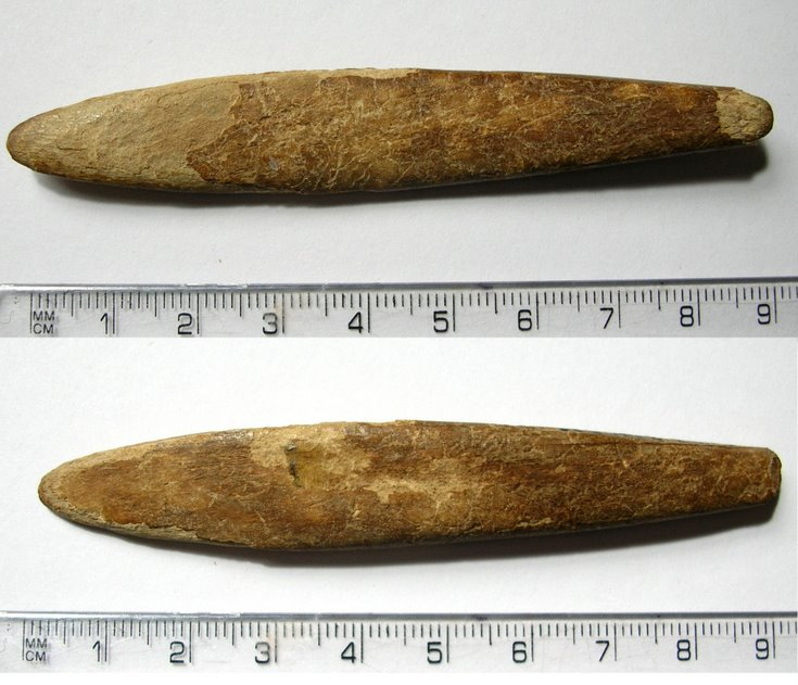 Small piece of shaped bone found at Skelbo Castle