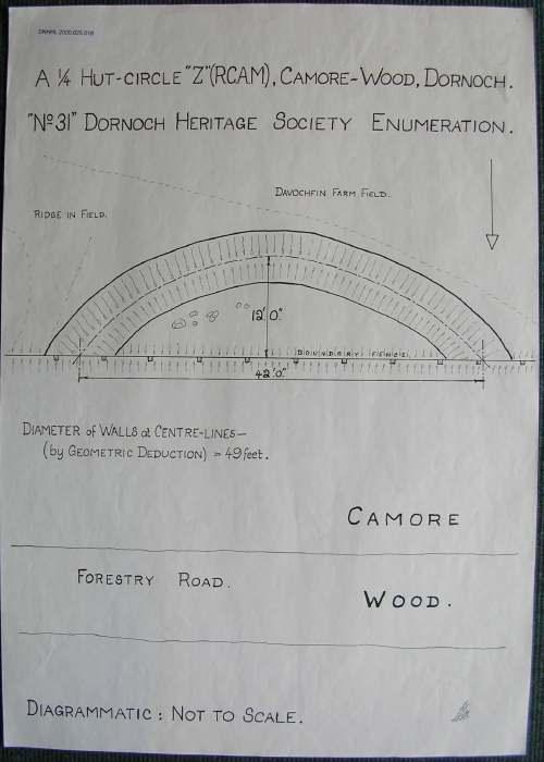 Hut circle ~ Camore Wood