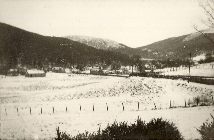 Snow Scene ~ Spinningdale