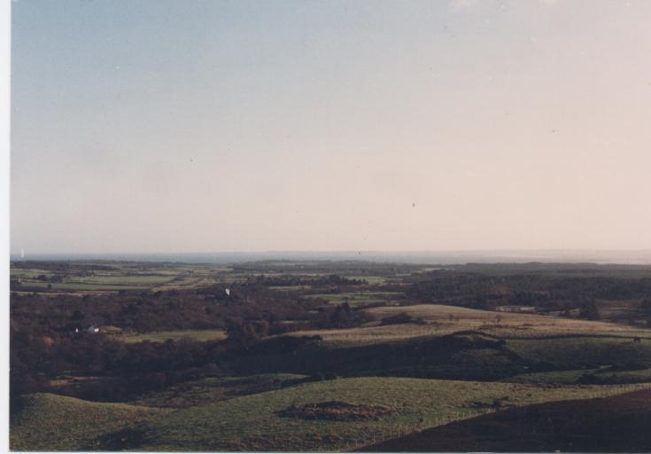 Hut circle near Astle