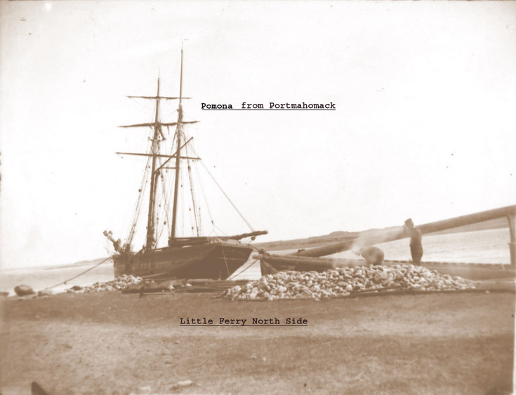 Two masted Ponoma of Portmahomack at Little Ferry